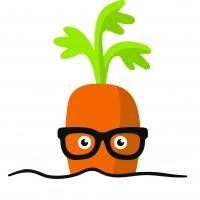 Bildungsprogramm GemüseAckerdemie - Ackern schafft Wirkung!