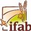 Getreide-Anbau in Weiter Reihe mit blühender Untersaat